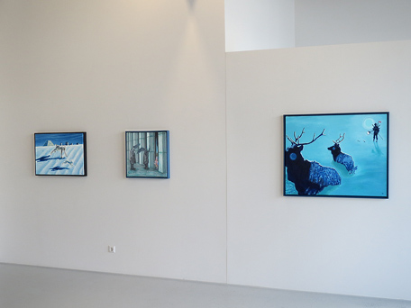 view on my last exhibition at gallery Borssenanger in 2014